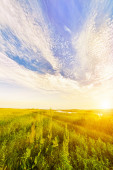 Sunset over Grassy Meadow. Landscape — Stock Photo