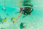 Young girl snorkelling over a shallow reef — Stock Photo