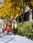 Two mom and two daughters walk in the rays of the autumn sun — Stock Photo