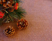 Christmas fir cones on a woolen pullover — Stock Photo
