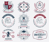 College and University badges 2 colored — Stock Vector