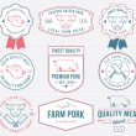 Premium pork meat colored — Stock Vector #57474245