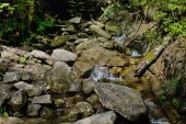 Mountain river Zhenets — Stock Photo