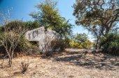 Bush Ruins — Stock Photo