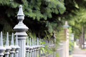 Metal fencing and green firs — Stock Photo