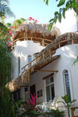 Boutique accommodations in tropical setting — ストック写真