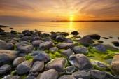 Beach rocks in sunset light — Stock Photo