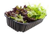 Lettuce mix — Stock Photo