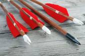 Wooden archery arrows with plastic nocks — Stock Photo