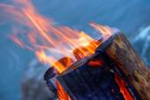 Log in fire — Stock Photo