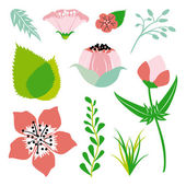 Floral and leaf element in bright colors. Vector and illustration design. — Vettoriale Stock