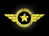 Golden emblem - aviator's badges of rank with wings and star — Stock Vector