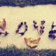 The word love is laid out on the earth from dried seeds — Stock Photo #66637855