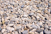 Background from sea stones — Stock Photo