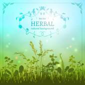 Delicate herbal background — ストックベクタ