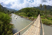 Suspension bamboo bridge across the river in a forest and rice fields — Stok fotoğraf