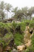 Traditional house on the rocky hill among palm trees on a foggy day — Stockfoto