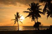 Sunset at the seaside - dark silhouettes of palm trees and amazing colorful clouds - tropical paradise — Stockfoto