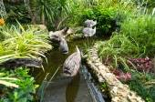 Wooden fish on a stick as a decoration in a canel in the park among tropical green plants — Stock Photo