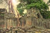 Ruins of ancient temple lost in jungle — Stock Photo