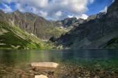 Two ducks swimming in crystal clear lake surrounded by mountain chain — Stock Photo