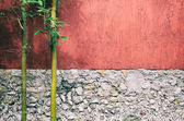 Closeup of half red half gray stone wall and two bamboo — Stock Photo
