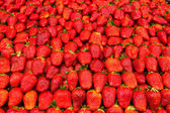 Strawberry wall — Stock Photo