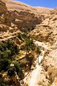 Long road in the desert, in Wadi Qelt,Judean Desert — Stock Photo