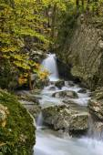 Waterfall in the woods in Autumn with foliage colors, Monte Cucc — Stock Photo