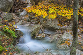 Waterfall in the woods in Autumn with foliage colors, Monte Cucc — Stok fotoğraf