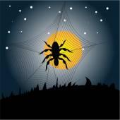 Halloween spider background — Stock Vector