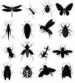 Insects icons set — Stock Vector