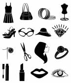 Ladies fashion icons set — Stock Vector