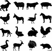 Farm animals icons set — Stock Vector