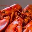 Lobster — Stock Photo #62005819