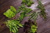 Set of spice herbs. — Stock Photo