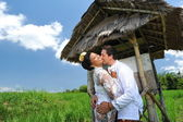 Groom and Bride Posing in A Paddy Field — Stock Photo