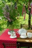 Served table with dishes outdoors — Stockfoto