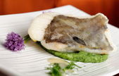 John Dory fish fillet on spinach puree — Stock Photo