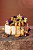 Grilled soft brie, Camembert cheese with honey — Stockfoto