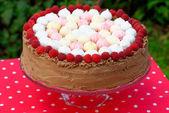 Raspberry ice-cream cake — Stock Photo