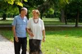 Senior happy couple — Стоковое фото