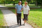 Senior happy couple — Foto de Stock