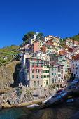 Riomaggiore village — Stock Photo