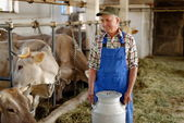 Farmer with dairy cows — Foto Stock