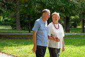 Senior happy couple — Stock Photo
