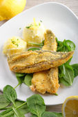 Fillet of sea bream with mashed potatoes — Stock Photo