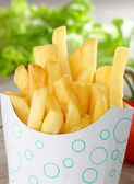 French Fries in Fast Food container — Stock Photo