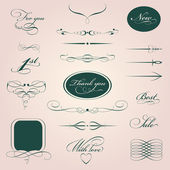 Set design elements of calligraphy — Stock Vector