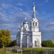 Постер, плакат: Church of the Holy Martyr Tsarina Alexandra in Nizino Petergof
